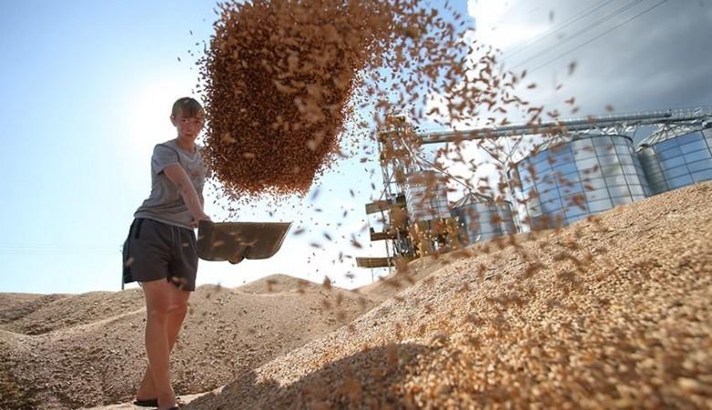 Китаю предлагают поставки пшеницы из Иркутской области и Забайкалья