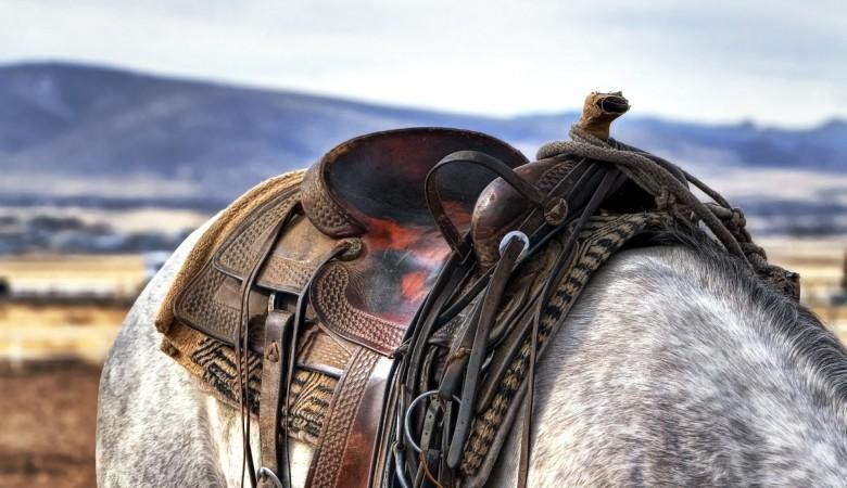 Мальчик из Тувы застрял в стремени лошади и умер