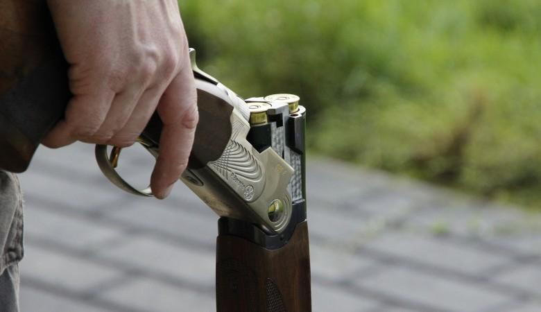 Полицейский на Алтае расстрелял из ружья девять лошадей и ранил двух