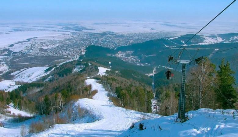 В Алтайском крае создали аграрно-туристический кластер «Алтайские луга»