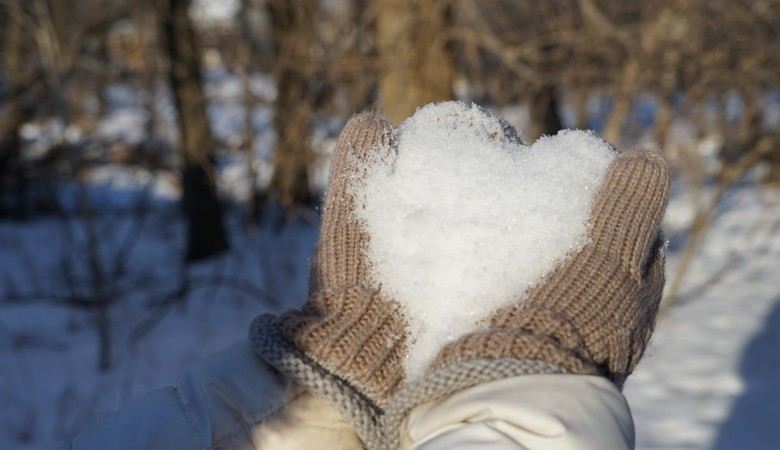 Режим ЧС введен в Новосибирске из-за снегопадов