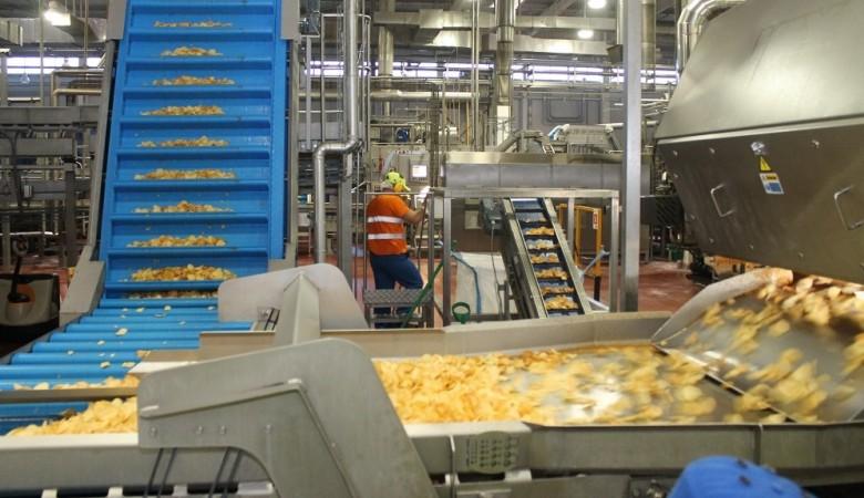PepsiCo планирует вложить 12 млрд рублей в завод снеков в Новосибирской области