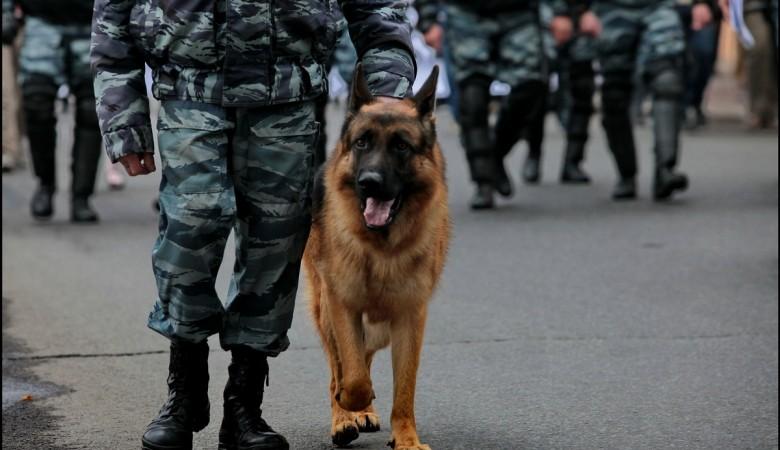 В Иркутске массово «минируют» школы и торговые центры