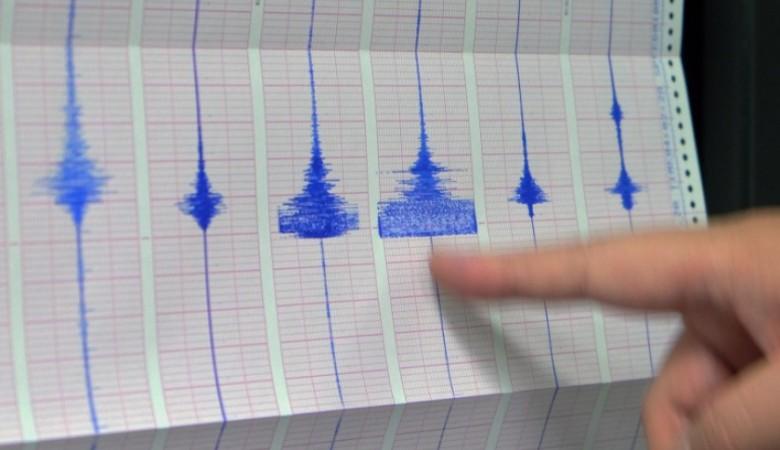 Землетрясение магнитудой 4,9 произошло у берегов Камчатки