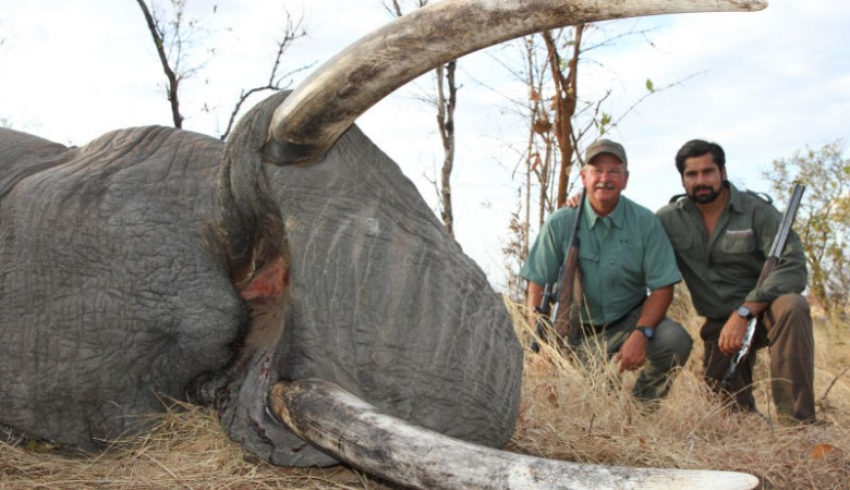 Иркутская полиция выдворила из РФ иностранца, который совершил преступление против дикой природы в Танзании