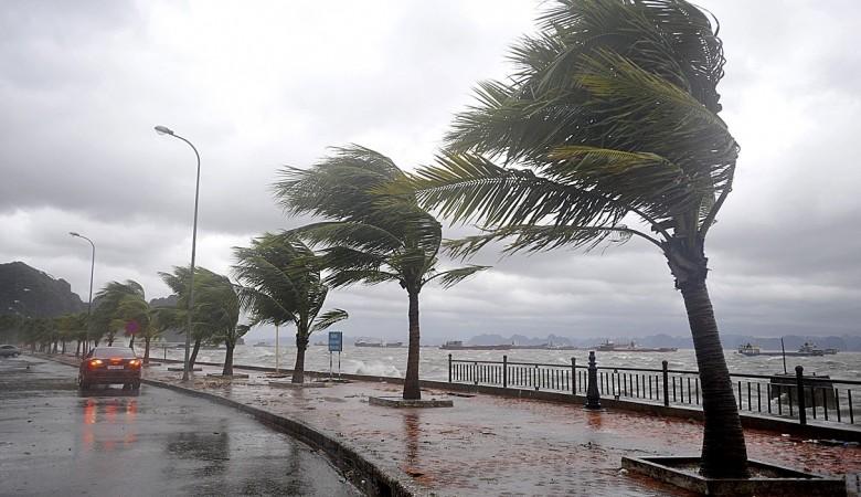 Власти Шанхая эвакуировали 200 тыс. человек из-за приближения тайфуна
