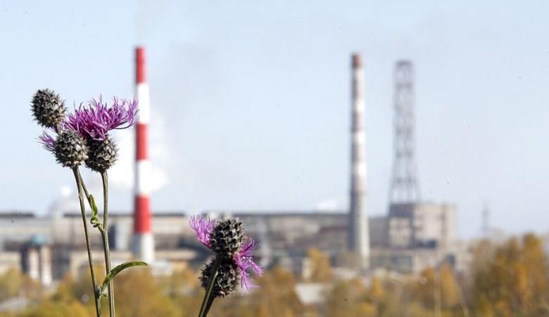 Росгеология в мае 2018 года приступит к рекультивации отходов Байкальского ЦБК