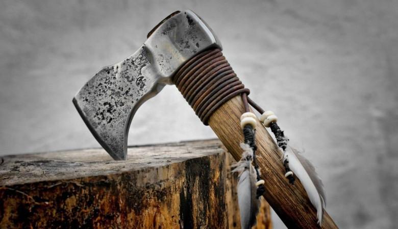 В Хакасии елочный браконьер срубил 250 деревьев
