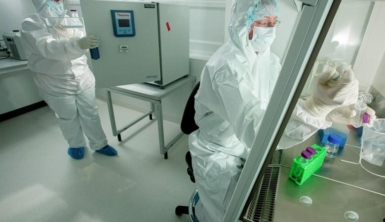Сибирские ученые готовятся к клиническим испытаниям нового препарата против рака