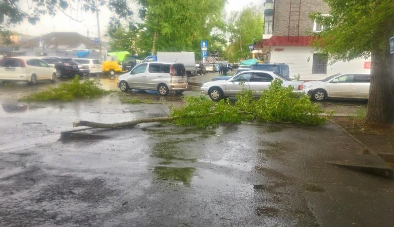 Ураган в Хакасии оставил без света 800 домов