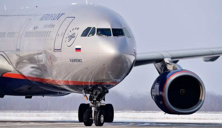 Самолет «Аэрофлота» совершил посадку в Петропавловске-Камчатском с вмятиной от птицы