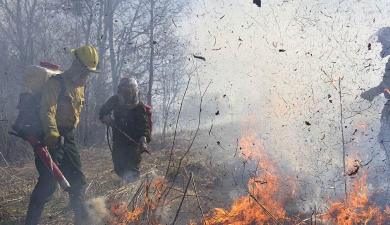 Три лесных пожара потушили вБурятии засутки
