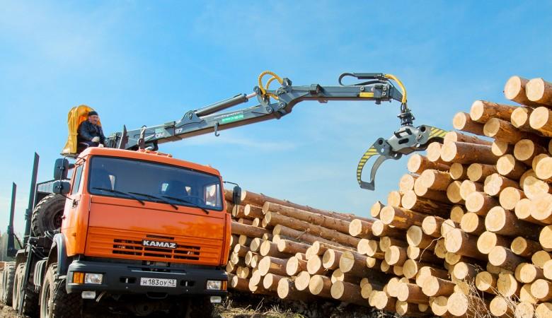 Тува добилась разрешения на экспорт леса