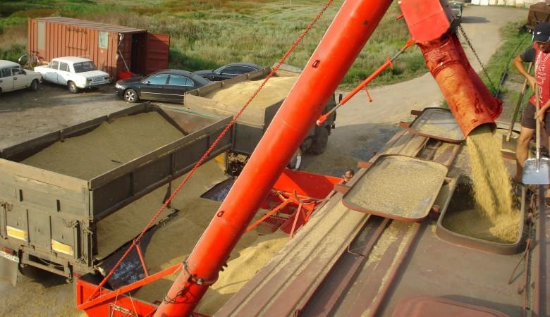 Минсельхоз сохраняет прогноз по экспорту зерна из РФ в 2019-20 сельхозгоду в 45 млн тонн