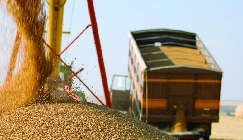 Красноярские аграрии намерены в 2016г впервые отправить в КНР 200 тыс. тонн зерна