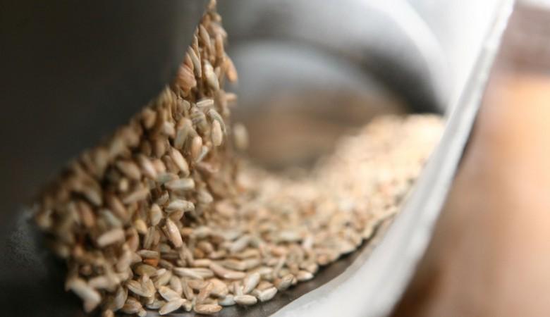 Суд продлил конкурсное производство в зерновой компании