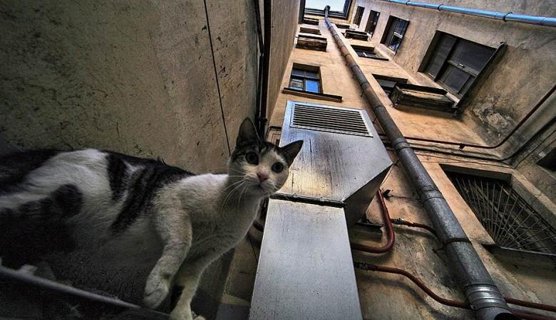 Жильцов сносимых домов решили переселять в квартиры на вторичном рынке