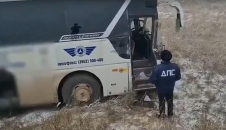 Две коровы погибли в аварии фуры и автобуса в Иркутской области