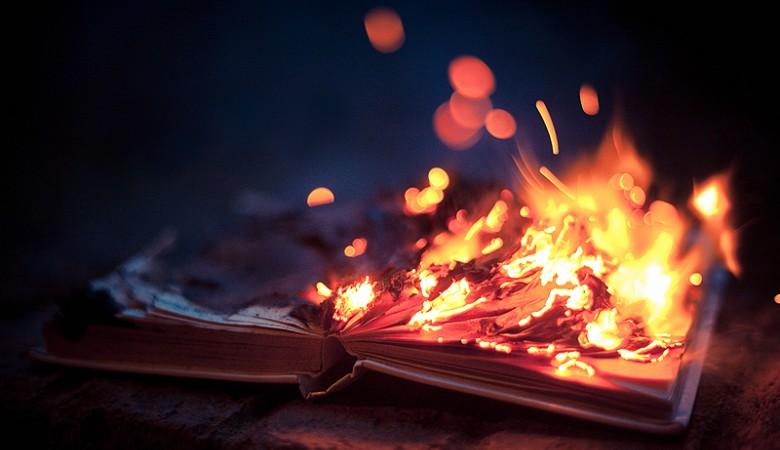 В Новосибирске детям устроили костер из книг о ВОВ: сушили два дня, чтобы лучше горели