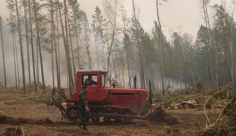 Площадь лесных пожаров в Иркутской области за сутки выросла в 1,7 раза