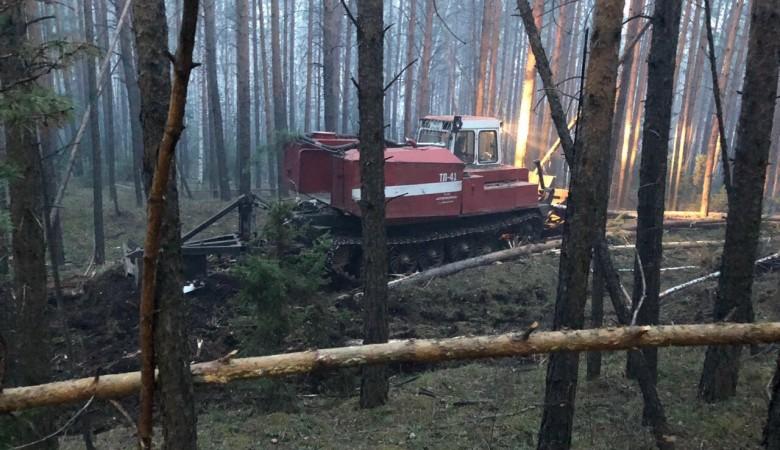 В Иркутской области горит 42 тыс. га леса