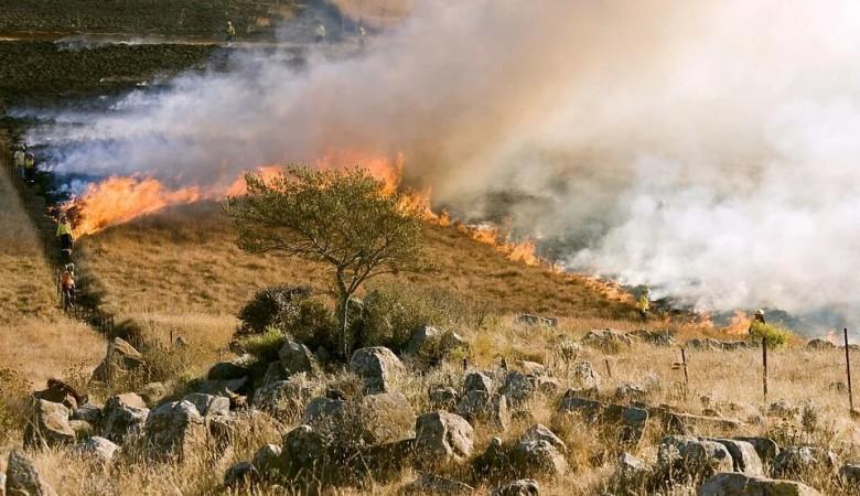 Крупные степные пожары произошли в Хакасии