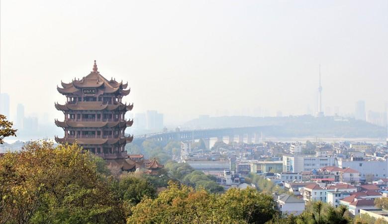Китай проверит тысячи образцов крови из Уханя, расследуя происхождение COVID-19